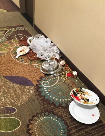 Holiday Inn Ann Arbor / University of Michigan : The mess in the hallway
