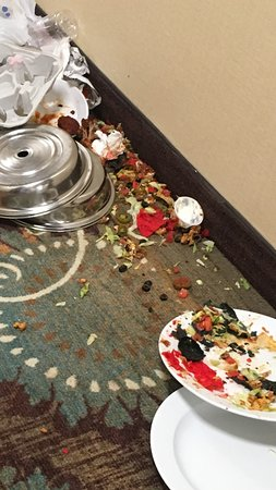 Holiday Inn Ann Arbor / University of Michigan : Mess in the hallway - staff seemed indifferent about it