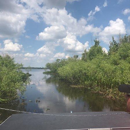 Lake Panasoffkee照片