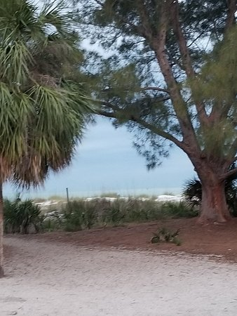 The Molloy Gulf Front Motel and Cottages: 20180408_070737_large.jpg