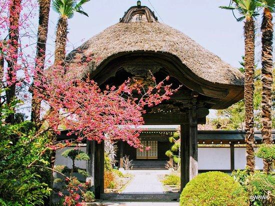 Jorurisan Toho-in Kokubun-ji Temple