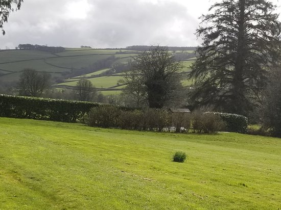 Lewtrenchard Manor: 20180404_104022_large.jpg