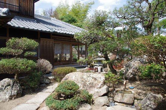 Nose-cho, Japan: 非常に希少な立派な赤松がなっており、癒しのパワースポットとしてご来寺される方も多くいらっしゃいます。