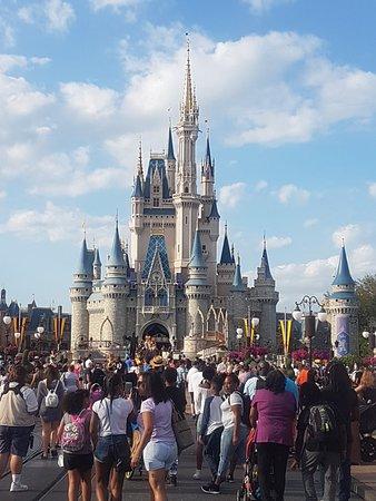 Best way to go at Disney