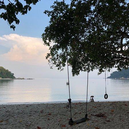 Coral Beach : photo5.jpg