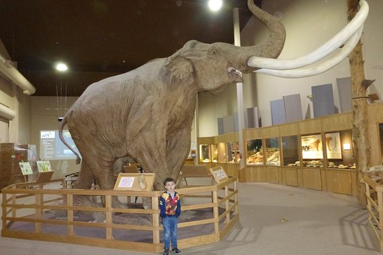 Mammoth Site of Hot Springs: A life-sized model of the Columbian mammoth