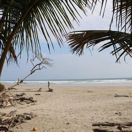 Playa Hermosa : photo1.jpg