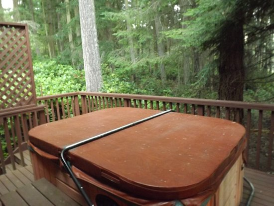 Inn to the Woods: Hot tub off room