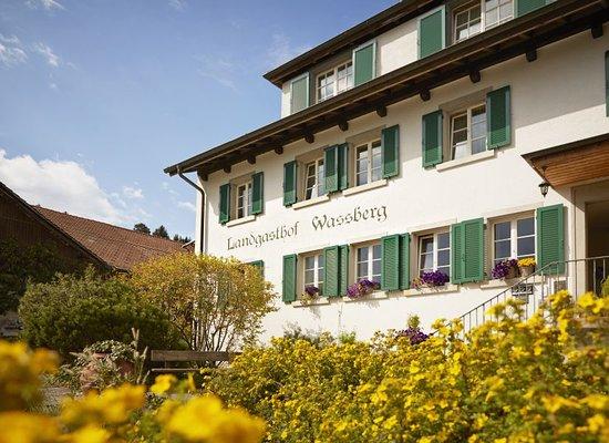 Forch, سويسرا: Wassberg im Sommer