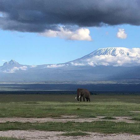 Amboseli National Park Kenya Updated 2018 Top Tips