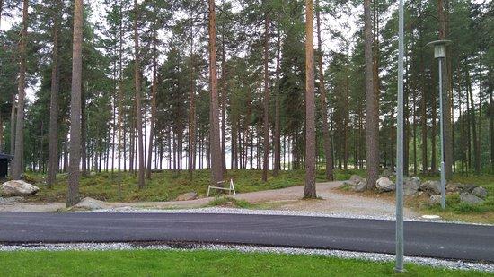 Nurmes, Finlande : view from ground floor room
