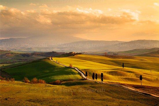 Torrita di Siena, إيطاليا: Val D'Orcia
