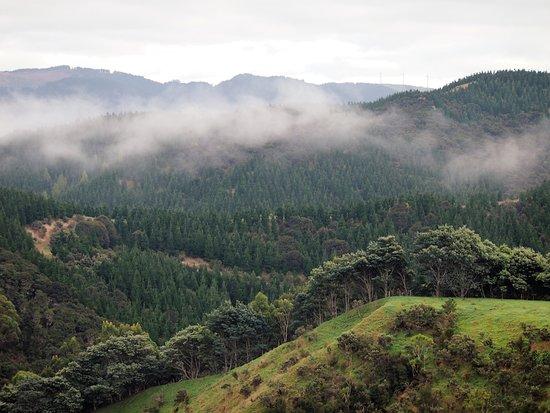 Wairarapa Bild