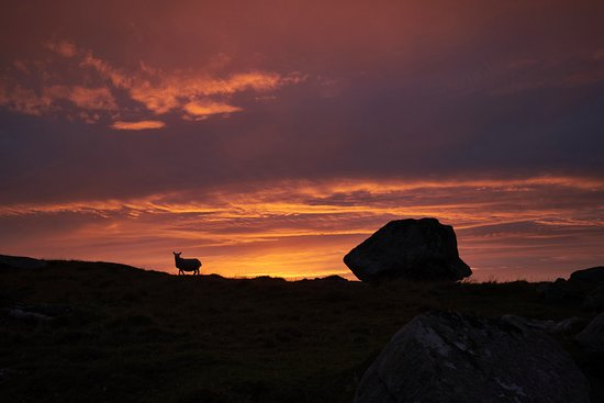 Clabbach, Isle of Coll.