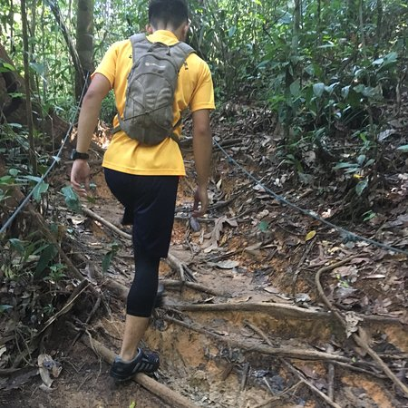 how to go to ulu temburong national park