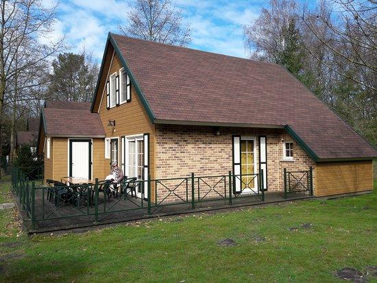 Helchteren, Belgie: Vakantiehuis Patio 8+ Park Molenheide