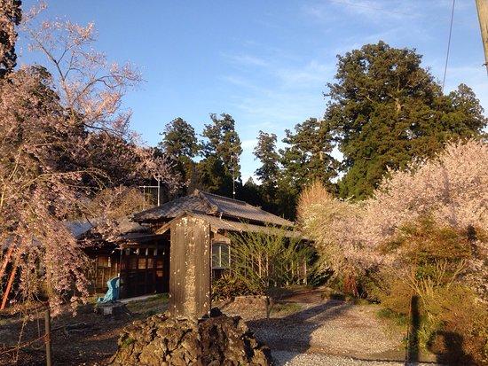 Murayama Sengen Shrine: 村山浅間神社
