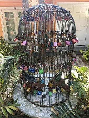 Tropical Inn: Such a cool idea!