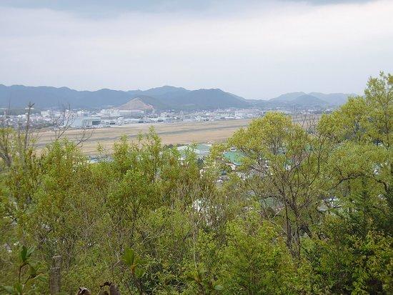 Mii Castle