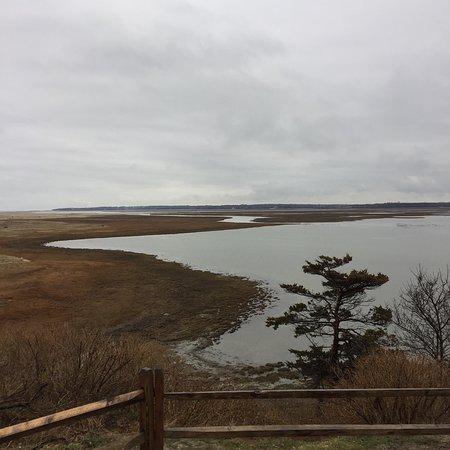 Coast Guard Beach : salt pond