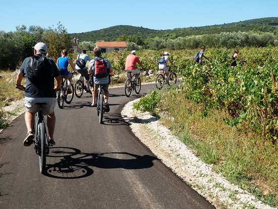 Korcula Island, Kroatië: Cycling & Wine Tasting on Korcula