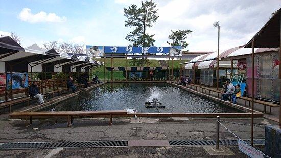 Tedori Fishland
