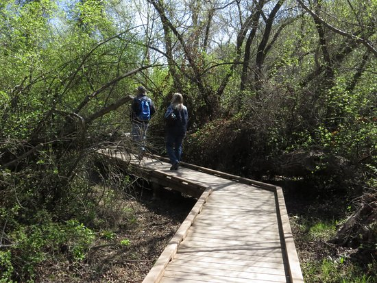 Clear Lake State Park: Part of a walking trail