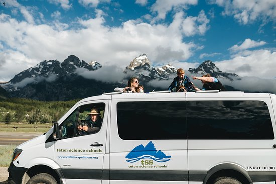 Wildlife Expeditions of Teton Science Schools