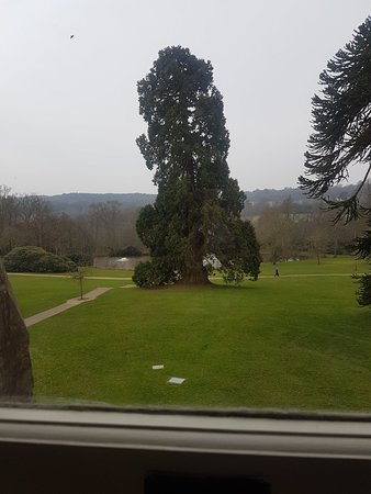 Wych Cross, UK: 20180407_172347_large.jpg