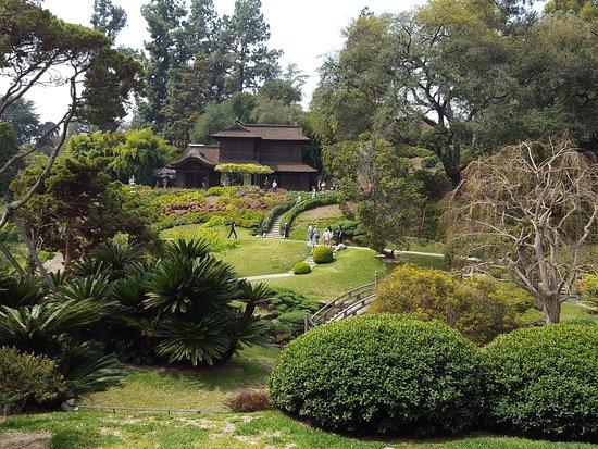 Japanese Tea Garden at the Huntington Library/Gardens, Pasadena, CA ...