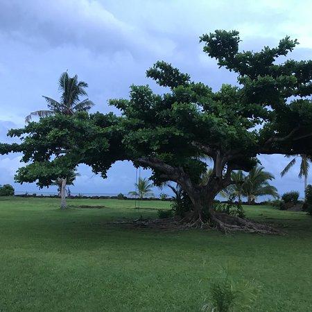 Salelologa, Σαμόα: photo6.jpg