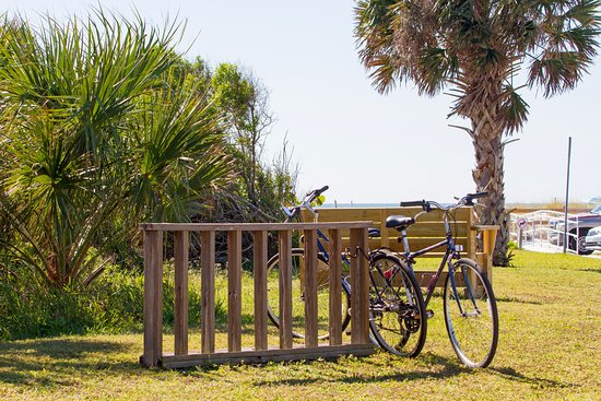 Caladesi Island State Park: Come by bike and enjoy nature.