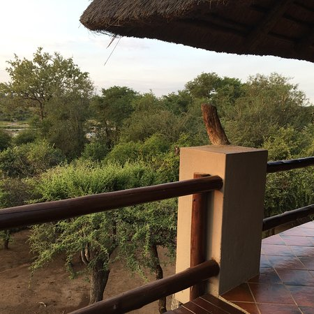 Bushwise Safaris: photo4.jpg