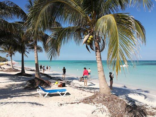 Cayo Jutia Beach: IMG_20180327_103926_large.jpg