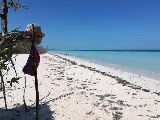 Cayo Jutia Beach: IMG_20180327_111113_large.jpg