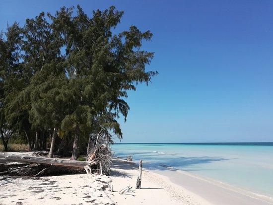 Cayo Jutia Beach: IMG_20180327_111457_large.jpg