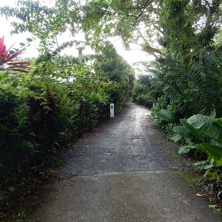 Basaga Holiday Residences: photo0.jpg
