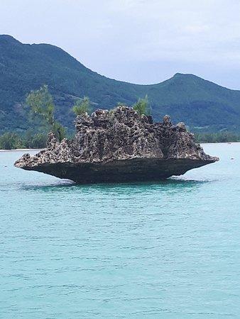 Tamarin Bay: 20180405_090914_large.jpg