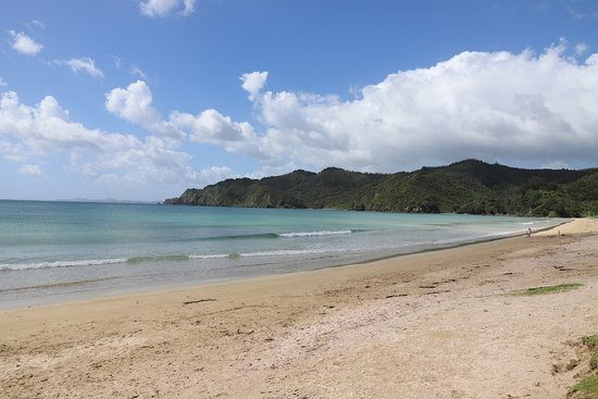 Cable Bay, New Zealand: Nice beach