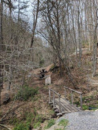 Barnardsville, Carolina del Norte: IMG_20180408_132541_large.jpg