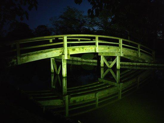 Bridge lit up in Suigo Park