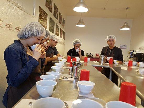 Lucia Coffee Tasting