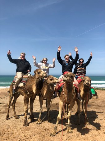 Said Private Day Tours : Camel rides!
