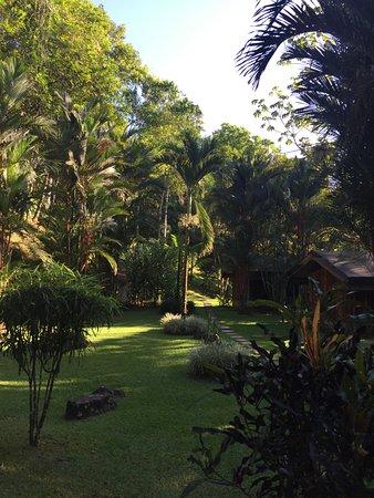 Osa Peninsula, Costa Rica: de superbes jardins entre les châlets/tentes