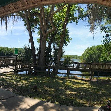 DeBary, FL: photo7.jpg