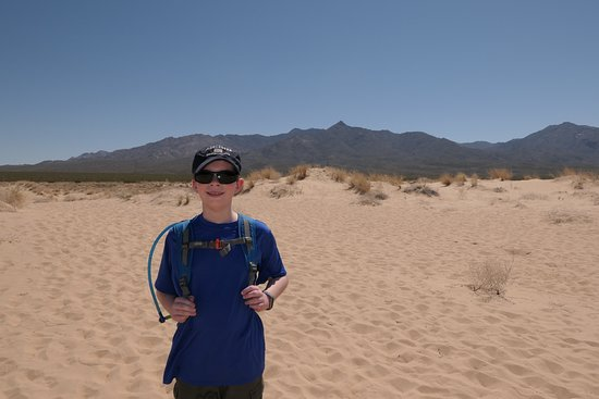 Mojave National Preserve: The rugged landscape is so different from where we live. The kids were truly in awe.