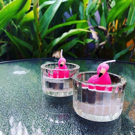 Pink Flamingo: photo1.jpg