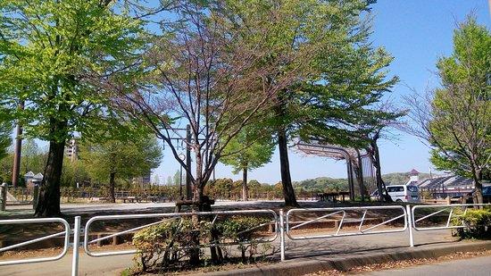 Hachioji Kamiyugi Park - Stadium