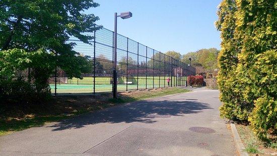 Hachioji Kamiyugi Park - Tennis Court