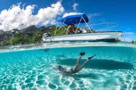 Haapiti, Γαλλική Πολυνησία: Our Boston Whaler Montauk 17 Lagoon boat